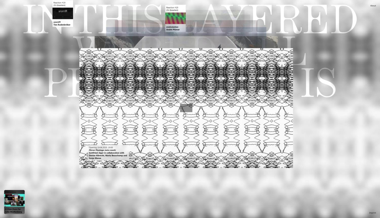 """Bildschirmansicht der Projektseite  """"Mirror Montage (wire mesh)"""" des Künstlers Gottfried Jäger in Zusammenarbeit mit Denise Albrecht, Marta Beauchamp und Sonja Mense."""